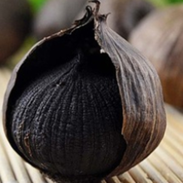 wholesale Fermented Single bulb Black Garlic