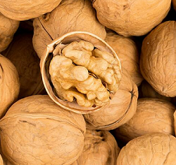 whole walnuts in shell
